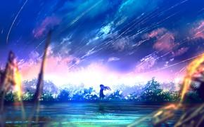 Картинка девушка, деревья, закат, природа, аниме, арт, goroku