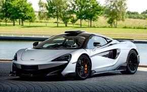Картинка McLaren, суперкар, Coupe, MSO, 2019, 600LT