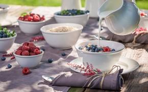 Картинка ягоды, завтрак, молоко, wood, гранола