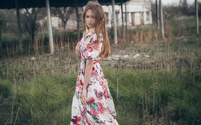 Картинка волосы, Девушка, платье, плечи