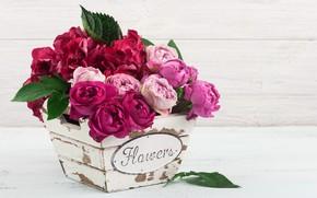 Картинка цветы, розы, букет, розовые, гортензии, IRINA BORT