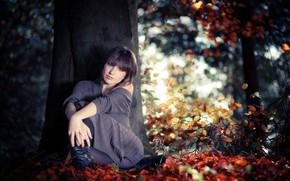 Картинка девушка, дерево, боке