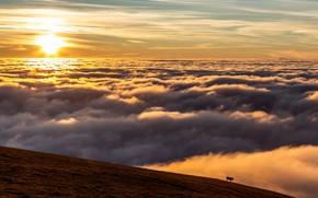Картинка небо, гора, корова, облока