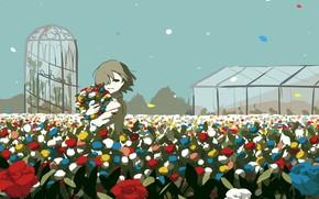 Картинка розы, мальчик, парник