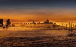 Картинка поле, закат, ночь, туман