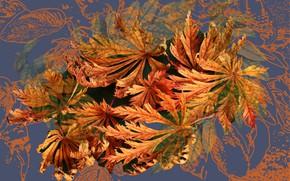 Картинка осень, абстракция, рендеринг, фон, коллаж, обои, фрактал, картинка, осенние листья, заставка на рабочий стол
