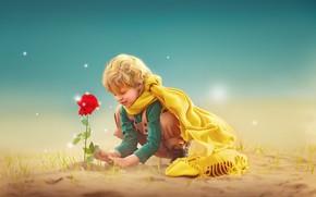 Картинка цветок, роза, мальчик, ребёнок, фотоарт, Ксения Лысенкова, Маленький принц