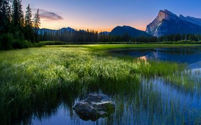 Картинка трава, горы, берег, водоем