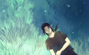 Картинка поле, трава, Naruto, Art, Uchiha Itachi, by Ns7104
