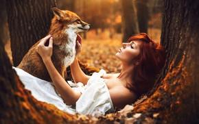 Картинка Fox, white, dress, Autumn, autumn, tree, Woman, sitting, Redhaired, redhair