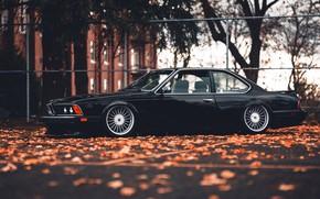 Картинка BMW, БМВ, 635, CSi, BMW 635 CSi