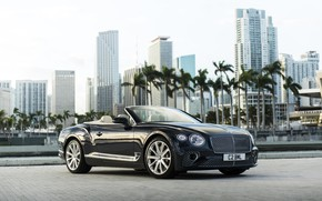Картинка Bentley, Continental, Continental GT, Convertible, V8, 2019