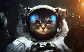 Картинка кот, космос, космонавт, астероид, костюм