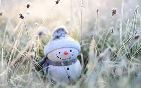 Картинка зима, иней, трава, улыбка, праздник, игрушка, Рождество, Новый год, снеговик, шарфик, шапочка, фигурка, боке, новогодние …