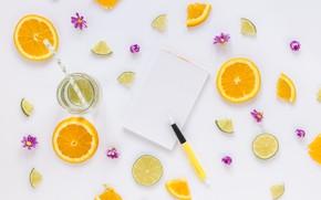 Картинка апельсин, цитрус, напиток, flowers, дольки, drink