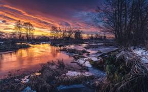 Картинка зима, небо, деревья, закат, природа, река, Tomczak Michał