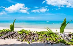 Картинка песок, море, пляж, лето, небо, солнце, берег, summer, beach, sea, seascape, beautiful, sand, paradise, tropical