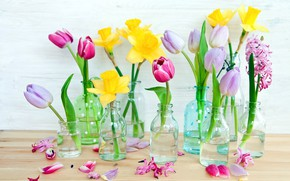 Картинка цветы, бутылки, вазочки