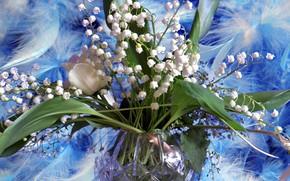 Обои лето, цветы, весна, ландыш