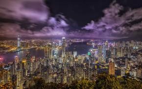 Обои ночь, огни, Гонконг, Hong Kong