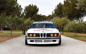 Картинка Деревья, BMW, Бампер, Фары, Classic car, Значок, Sports car, 1983, Радиаторная Решетка, BMW 635 CSi, …