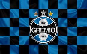 Картинка sport, logo, white, black, blue, tricolor, symbol, flag, soccer, Brazil, shield, champion, banner, coat of …