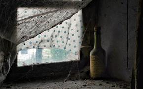 Картинка бутылка, паутина, окно, натурализм