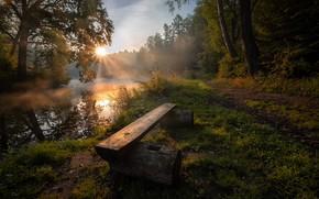Картинка лес, лето, солнце, лучи, природа, река, рассвет, утро, Россия, Андрей Чиж