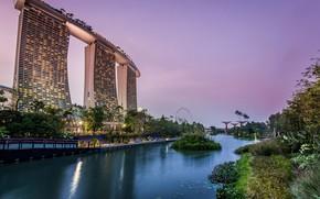 Обои деревья, огни, пруд, парк, вечер, фонари, Сингапур, небоскрёбы, кусты, сады, Gardens by the Bay