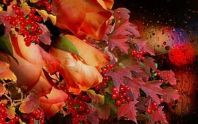 Картинка Розы, калина, букет, дождь, осень