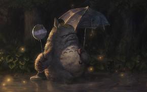 Картинка зонт, дедушка, Тоторо, Totoro, вставная челюсть, рваный зонт