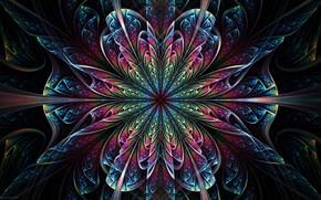 Картинка цветок, узор, симметрия