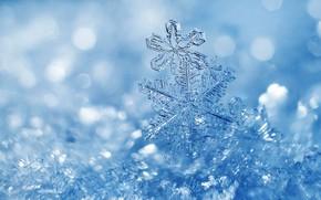 Картинка зима, свет, снег, снежинки, лёд, льдинки, Рождество, прозрачные, Новый год, кристаллы, снежинка, голубой фон, боке, …