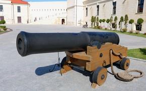 Картинка экспозиция, орудие, Константиновская батарея