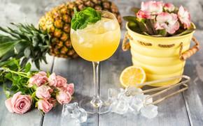 Обои лед, цветы, коктейль, цитрус, ананас
