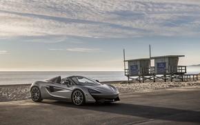 Картинка побережье, McLaren, суперкар, 2018, Spider, 570S