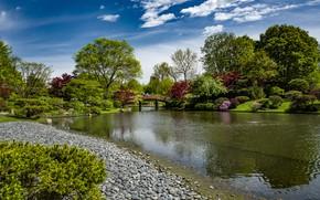 Картинка небо, солнце, облака, деревья, мост, пруд, парк, камни, люди, США, кусты, Missouri Botanical Garden