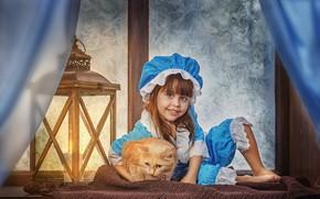 Обои зима, кошка, кот, улыбка, животное, шарф, окно, мороз, костюм, девочка, фонарь, занавески, подоконник, шишки, ребёнок, ...