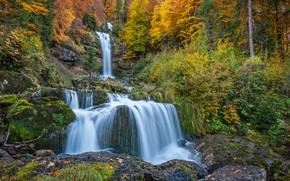 Картинка осень, лес, скала, водопад, Швейцария, каскад, Switzerland, Водопад Гиссбах, Giessbach Waterfall