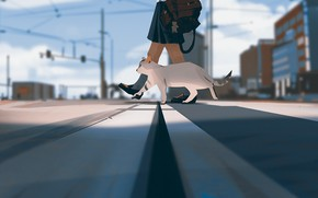 Картинка небо, ноги, столбы, провода, перспектива, Япония, школьница, портфель, пятнистая кошка, пешеходный переход, городская улица