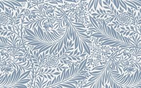 Картинка цветы, фон, текстура, Flower, Design, Vintage, Background, Pattern, Floral