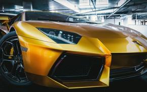 Картинка Авто, Lamborghini, Машина, Суперкар, Aventador, lp700-4, Lamborghini Aventador, Передок, Спорткар, Transport & Vehicles, by Alexander …