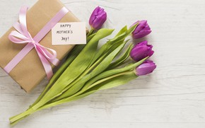 Картинка цветы, flowers, gift box, mother's day, букет, подарок, happy, purple, tulips, тюльпаны