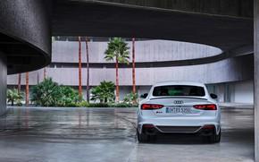Картинка Audi, вид сзади, RS5, Sportback, RS 5, 2020