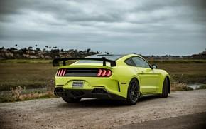 Картинка Mustang, Ford, вид сзади, tuning, 2019, Revenge GT
