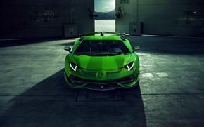 Картинка Lamborghini, суперкар, вид спереди, Aventador, Novitec, SVJ, 2019, Aventador SVJ