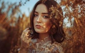 Картинка взгляд, солнце, ветки, природа, поза, модель, портрет, макияж, прическа, шатенка, красотка, боке, Anne Hoffmann, kassio. …