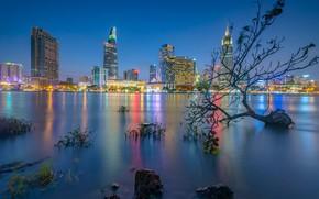 Картинка огни, река, берег, здания, дома, вечер, Вьетнам, небоскрёбы, Vietnam, Сайгон, Хошимин, Saigon