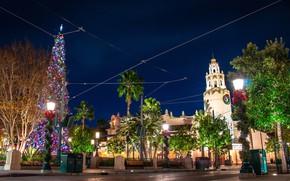 Картинка фото, Дизайн, Ночь, Город, Калифорния, Новый год, Елка, США, Уличные фонари, Диснейленд. Парк