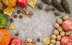 Картинка осень, листья, яблоки, тыква, фрукты, орехи, wood, autumn, leaves, fruit, pumpkin, apples
